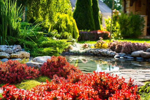 Things you must look for when choosing a landscaping company